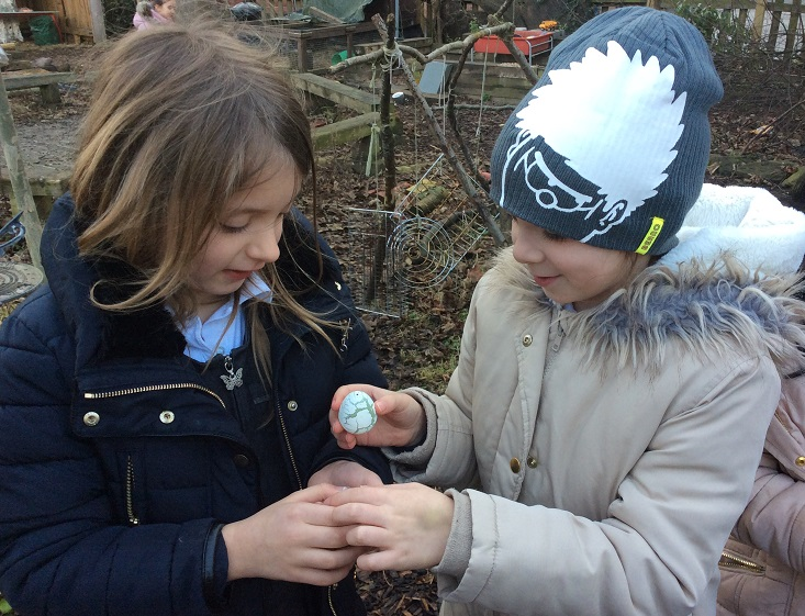 Dragons in the Eco-garden - Lord Scudamore Academy
